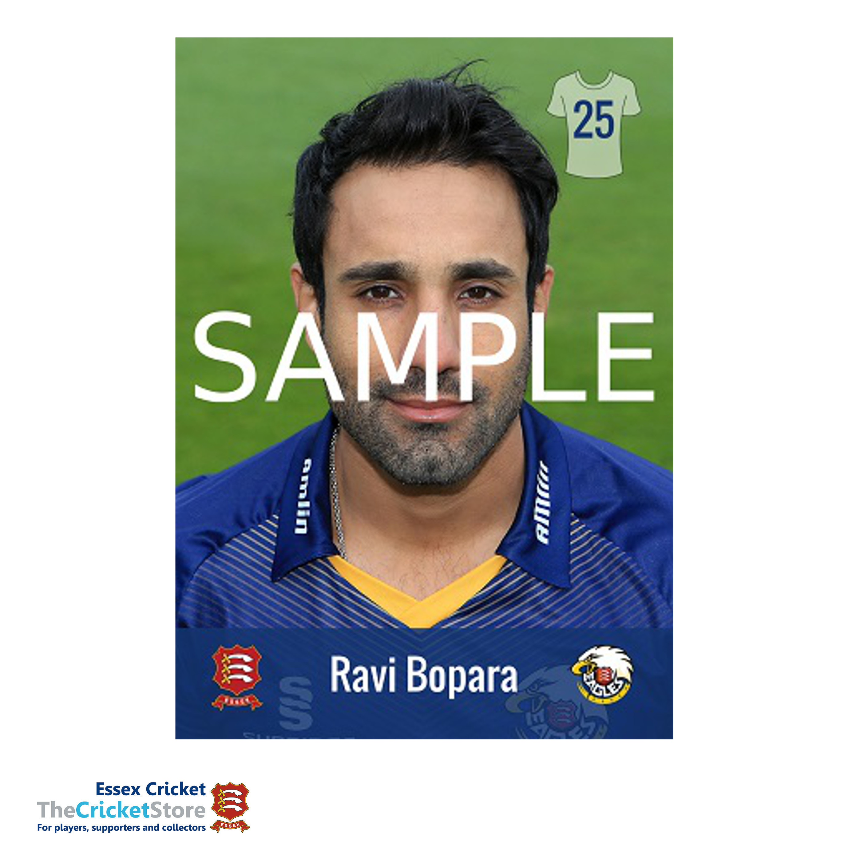 Player Profile Postcard – The Cricket Store at Essex Cricket